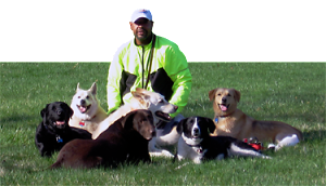 Unleash Your Dog's Potential - Crawford's Canine Services. Dog Walking, Exercising and In-Home Training Services, Columbus, Ohio. Certified Trainer.